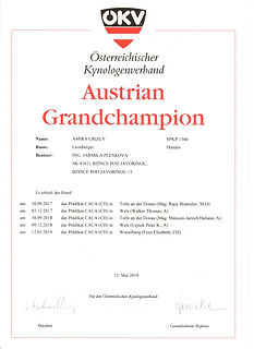 Austrian Grandchampion AMIRA CRIZLY 1.jp