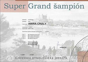 AMIRA Super Grand Champion SR.jpg