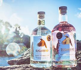 Sugarbird Craft Gin Awarded Best Premium Gin in South Africa - Google Chrome 2021_09_14 15