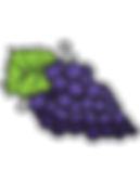 Blackcurrant-fruit.png
