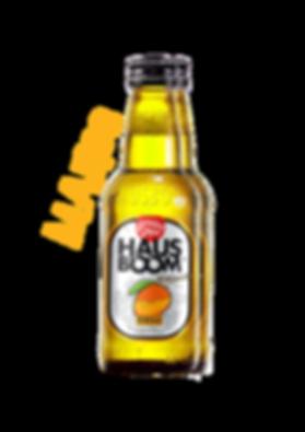 Mango-Hausboom-main.png