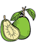 Guava-fruit.png