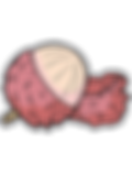 Lychee-fruit.png