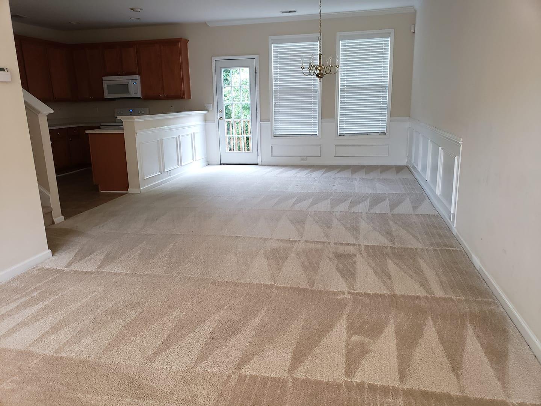 Carpet Cleaning Triangles 4 Corners.jpg