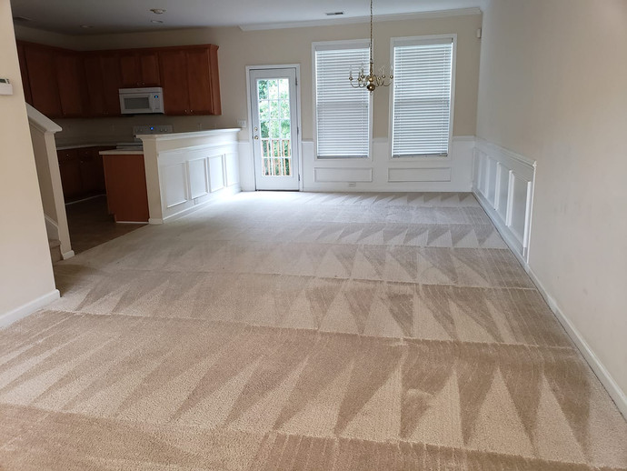 Carpet Cleaning Triangles 4 Corners.jpg