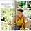 Thumbnail: Setting The Foundation, Holistic Health Book