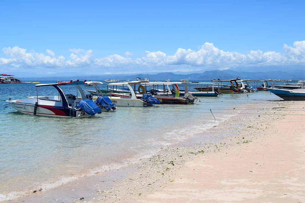 Nusa Penida, Indonesia. How to get there, what to do, where to stay, best beaches, where to eat. Vegan restaurants in Nusa Penida. Best beaches in Nusa Penida. Backpacking Indonesia on a budget.