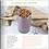Thumbnail: Smoothie Recipe Book