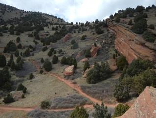 Thursday Trail Run: Matthews/Winters Park