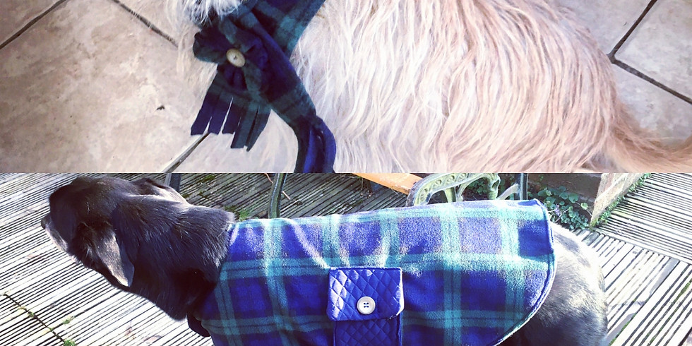 Sewing a Dog Coat Workshop (1)