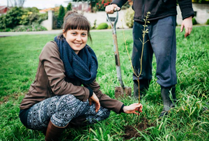 woman planting a tree