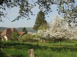 Autour de Linsdorf