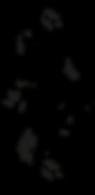 logo%2520KA%2520Vect_edited_edited.png