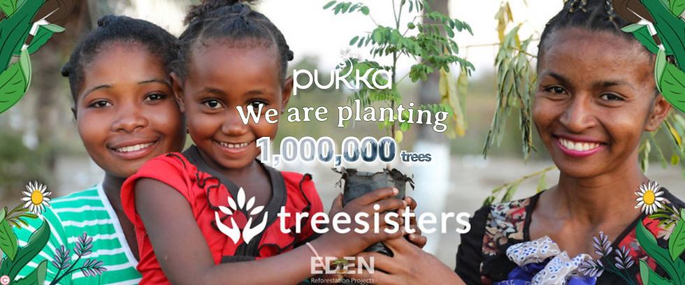 tree sisters 210422.png