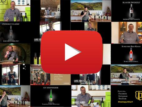 Virtuelle Weinproben: Lerne die Welt des Weins per Video kennen