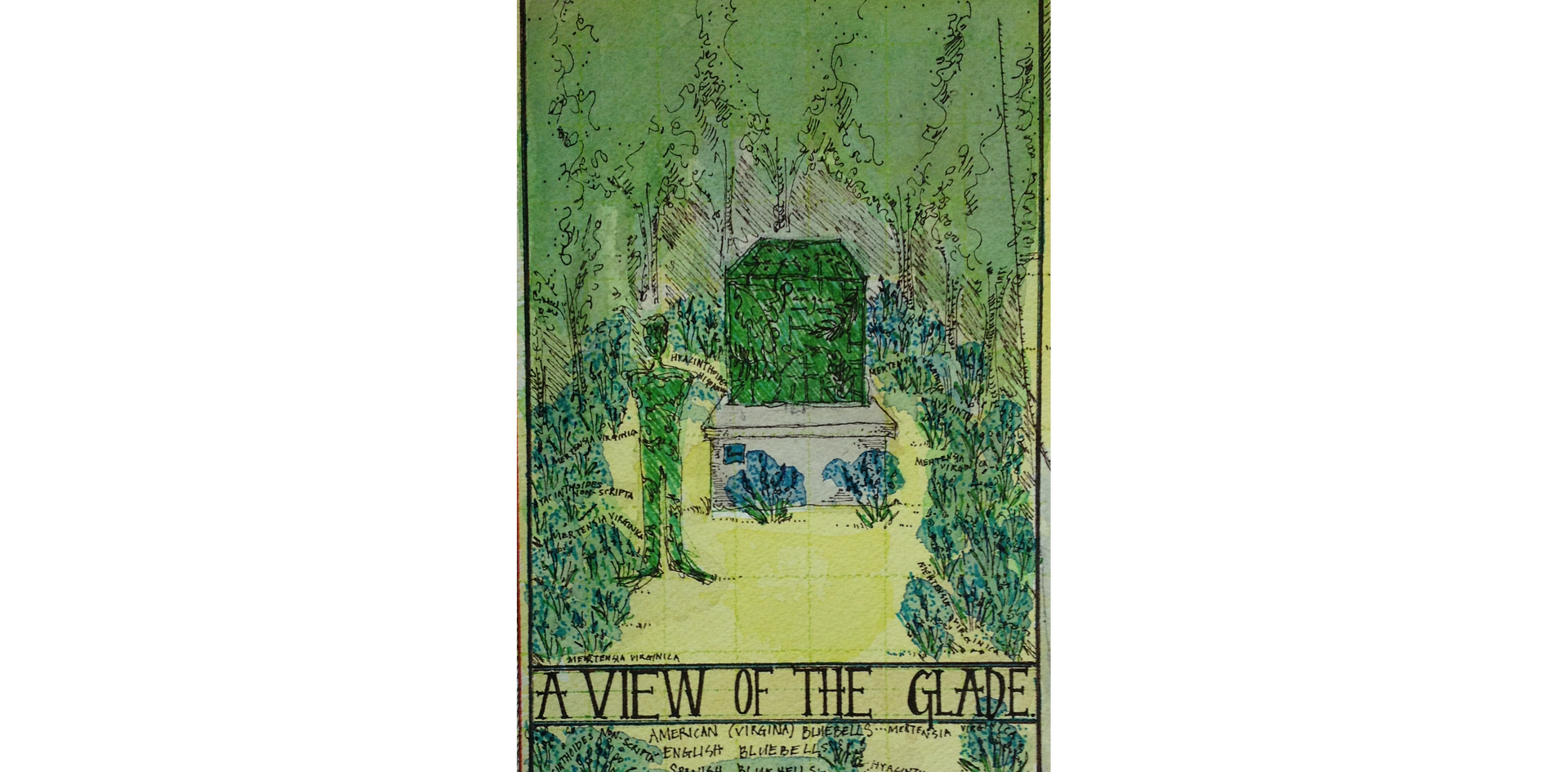 Masterplan Detail: A View of the Glade
