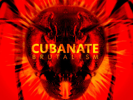 EAM Past Project - Cubanate - 'Brutalism'