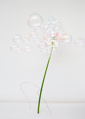 Bubbles I