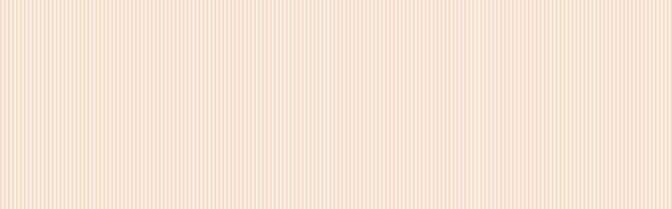 lijnen patroon styleloket_peach.jpg