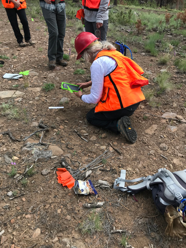 Site Stewards may participate in formal reconnaissance or surveys of prehistoric sites by request and under the guidance and supervision of land managers