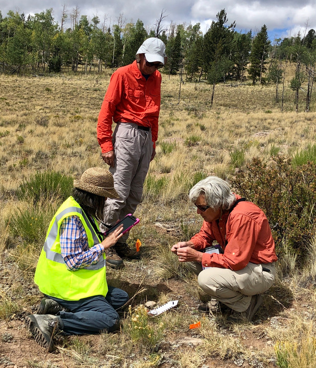 Site Stewards locate, photograph and record their findings of artifacts in South Park on tablets using state-of-the-art GPS and ArcGIS programs