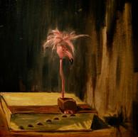 bird in the book