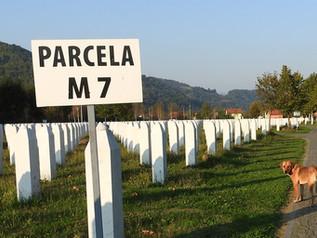 Srebrenicke horory a vrtěni psem...