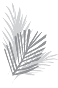 fronds4_edited.png