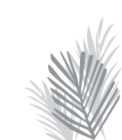 fronds2.png