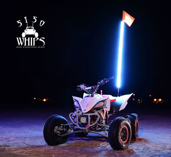 5150 Whips Single LED Trail Whip - 2 ft (w/Remote)