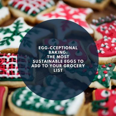 Egg-cceptable Baking