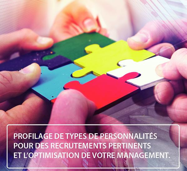 PROFILAGE DE TYPES DE PERSONNALITES.png