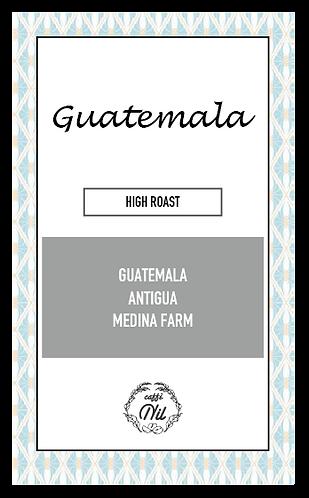 グァテマラ アンティグア サンミゲルウリアス農園