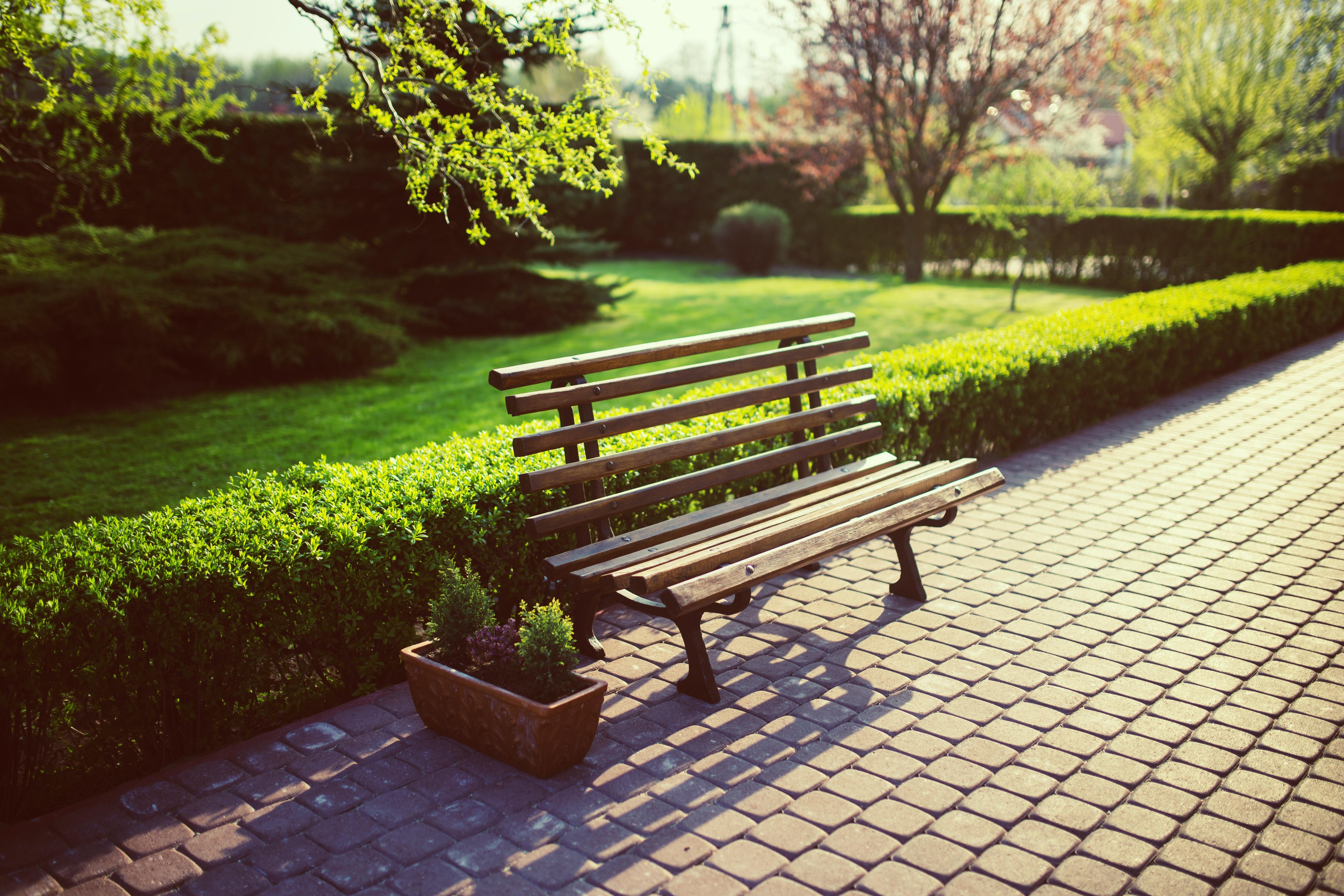 bench-in-the-garden-5760.jpg