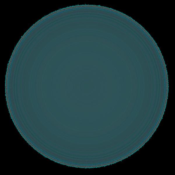 black-circle-fade-png-1_edited_edited.pn
