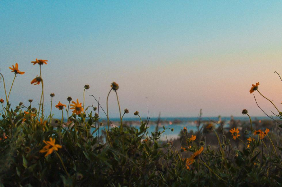 Newport Beach_Carris Bennett Christianson