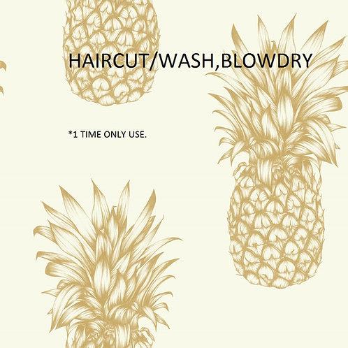 HAIRCUT/WASH,BLODRY