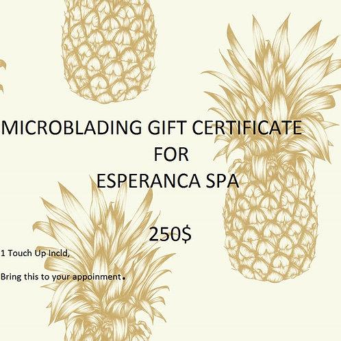 250$ Microblading