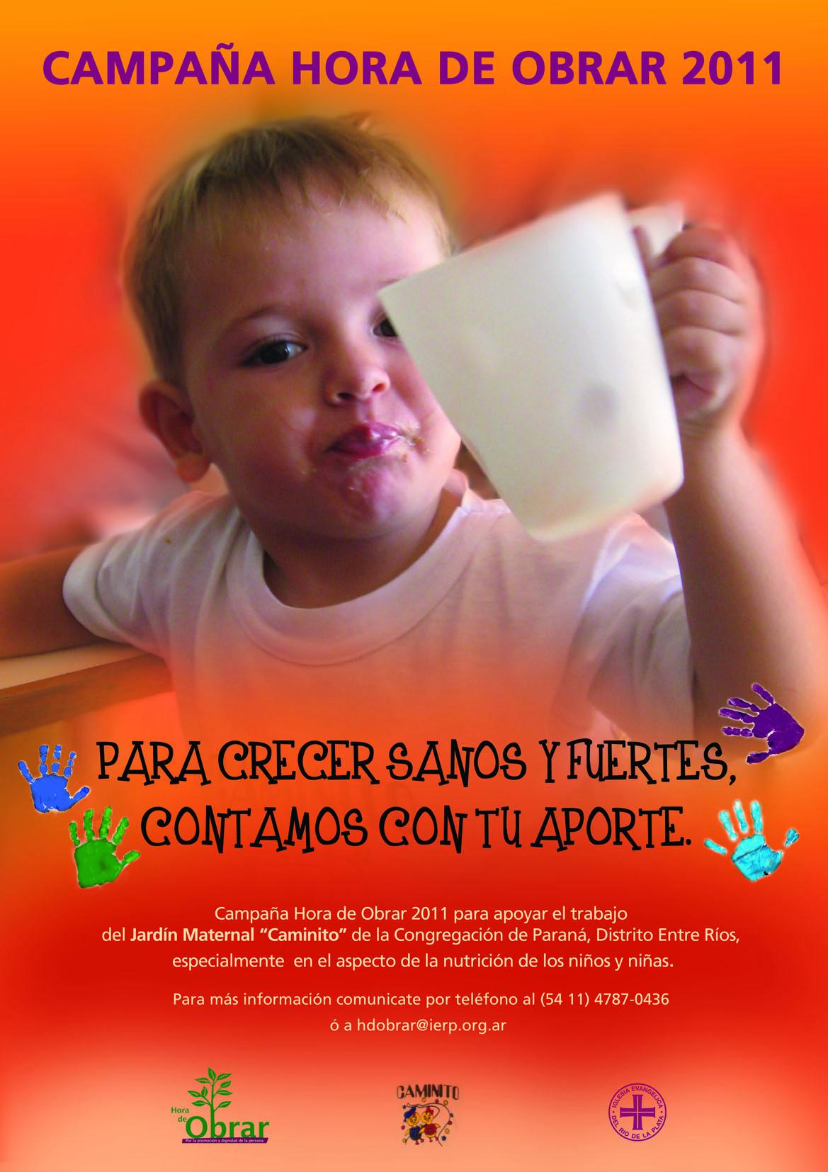 Campaña 2011