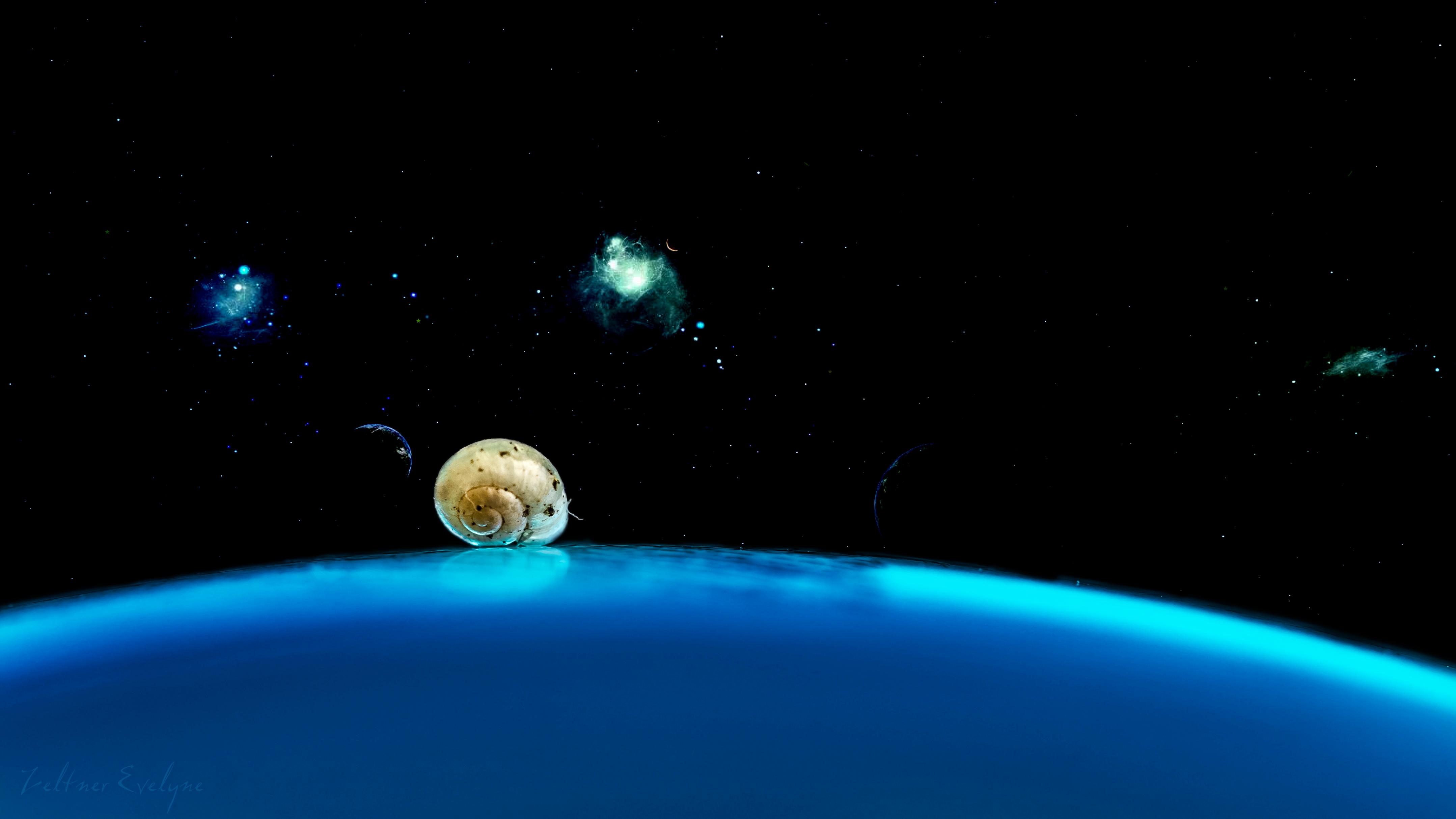 Planète escargot