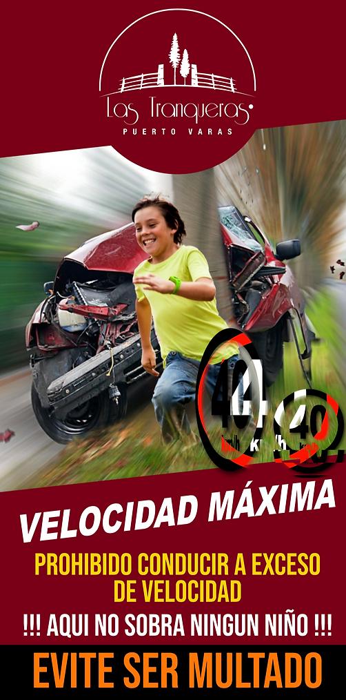 Velocidad Maxima.png