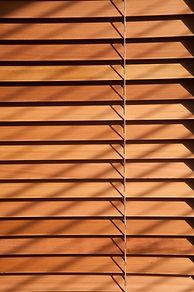Timbers 10.jpg