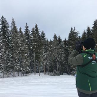 INTERVIEW - Ursina, Forest Supervisor, Kanton Zug