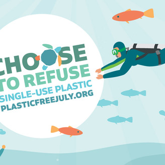 Plastic-free July 2020