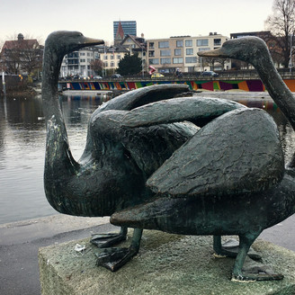 [Zug Art Project] Geese with no name