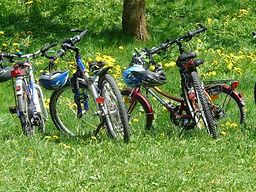 Cyclotourisme avec Let's Go ! Consulting