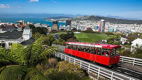 Creating Jewish Infrastructure in Wellington, New Zealand!