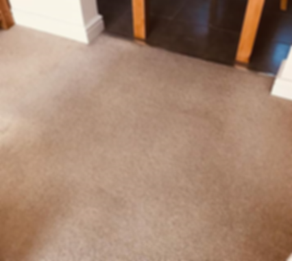 Carpet 3 After.png