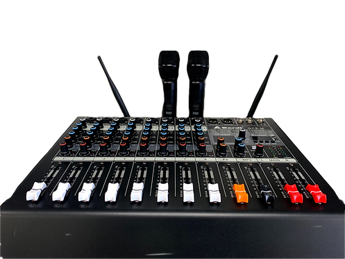 Bardl mixing amplifer with 2 wireless micphones