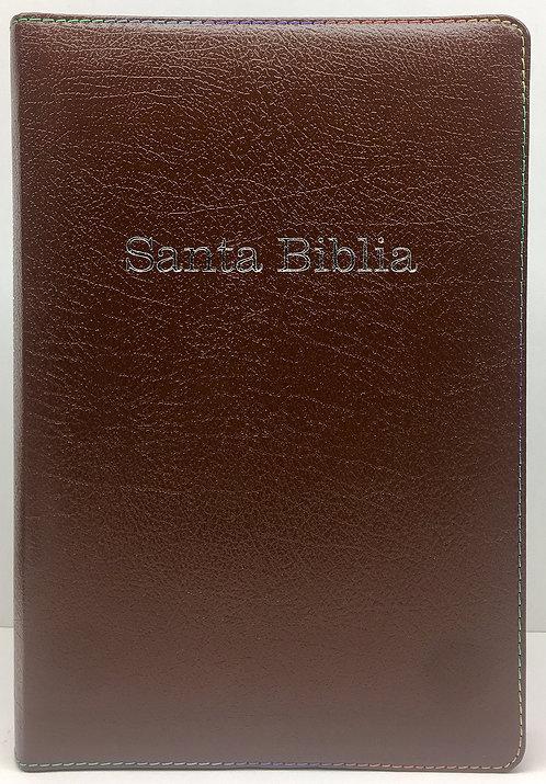 Biblia Arco iris Chocolate